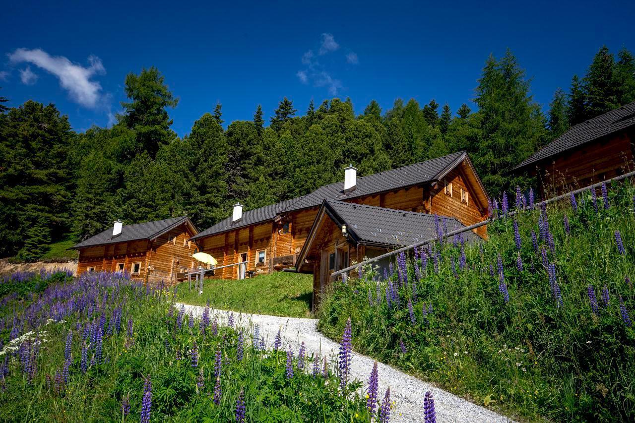 Ferienhaus Hütte für bis zu 6 Personen (244584), Turrach, Murtal, Steiermark, Österreich, Bild 7