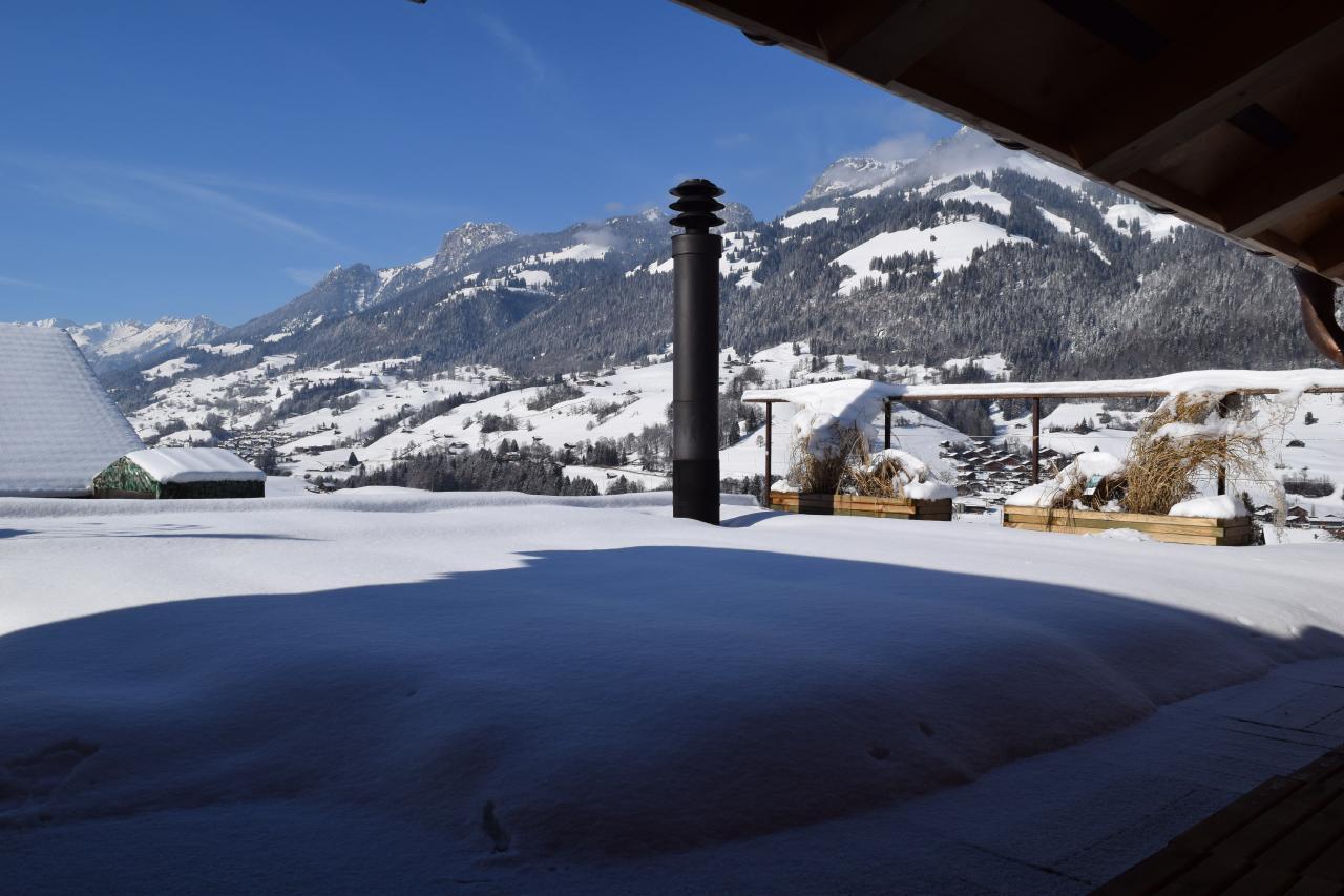Appartement de vacances 2 Zimmer-Ferienwohnung im Altholz-Stil (2470618), Oey, Diemtigtal, Oberland bernois, Suisse, image 28