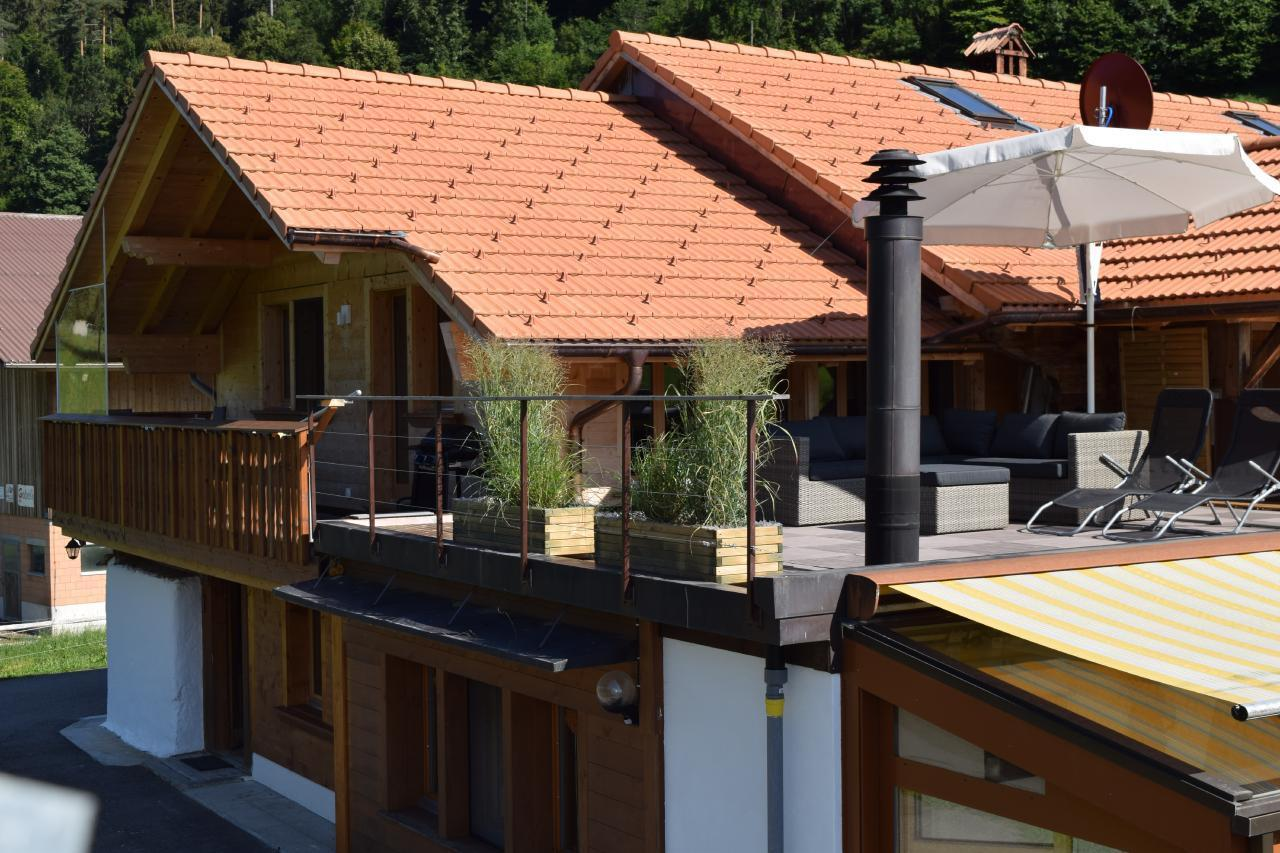 Appartement de vacances 2 Zimmer-Ferienwohnung im Altholz-Stil (2470618), Oey, Diemtigtal, Oberland bernois, Suisse, image 17
