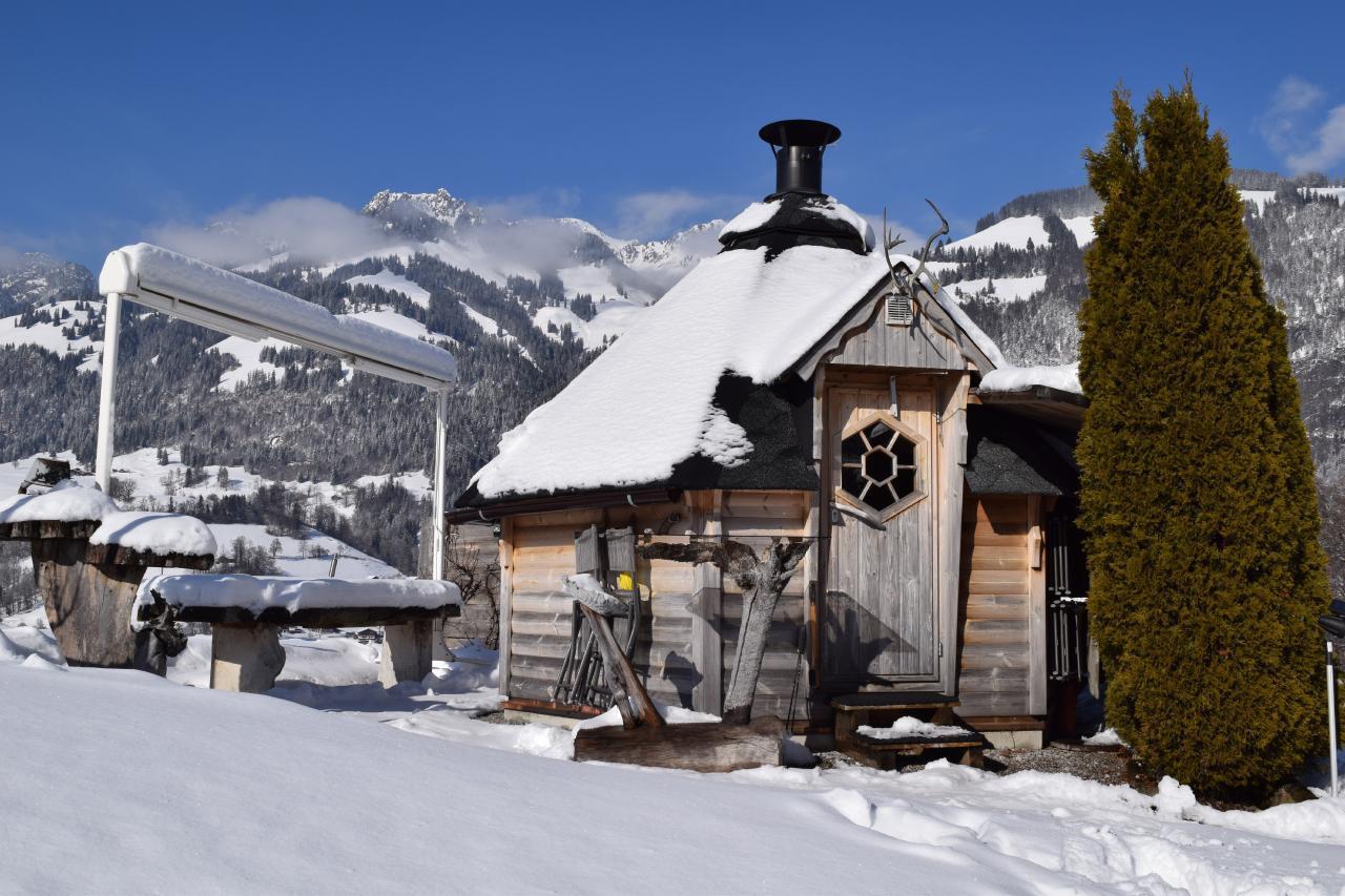 Appartement de vacances 2 Zimmer-Ferienwohnung im Altholz-Stil (2470618), Oey, Diemtigtal, Oberland bernois, Suisse, image 30