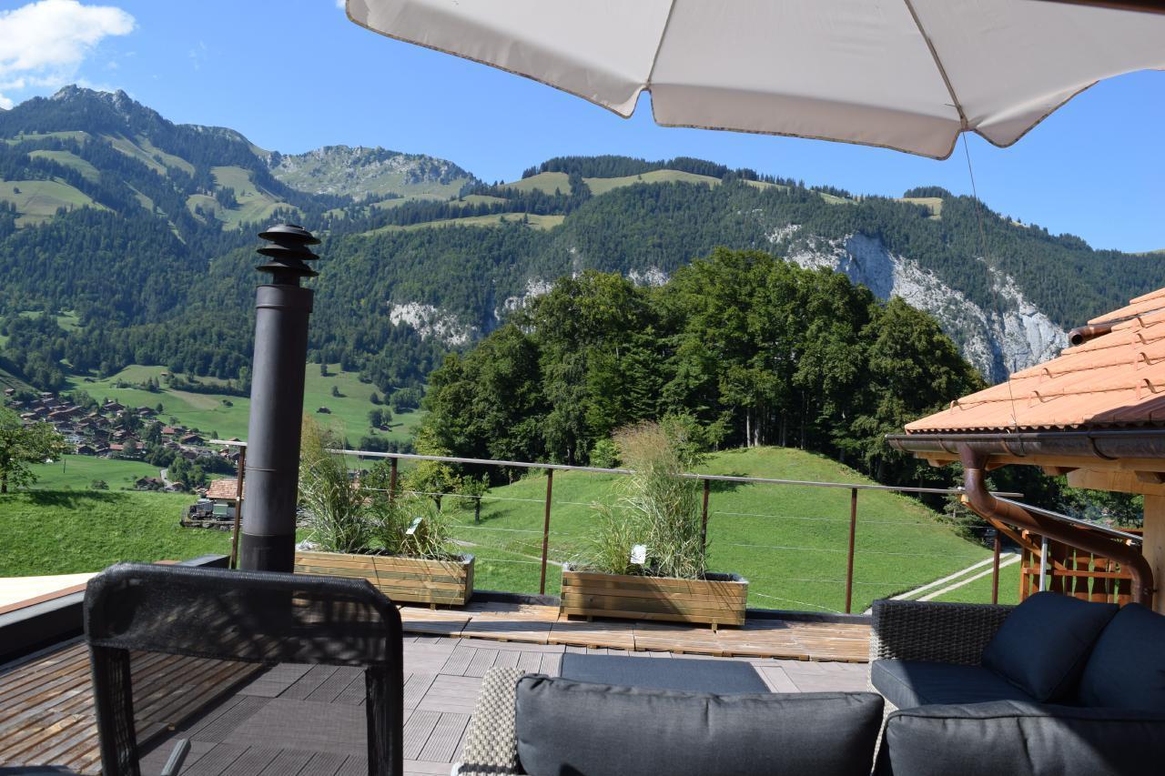 Appartement de vacances 2 Zimmer-Ferienwohnung im Altholz-Stil (2470618), Oey, Diemtigtal, Oberland bernois, Suisse, image 18