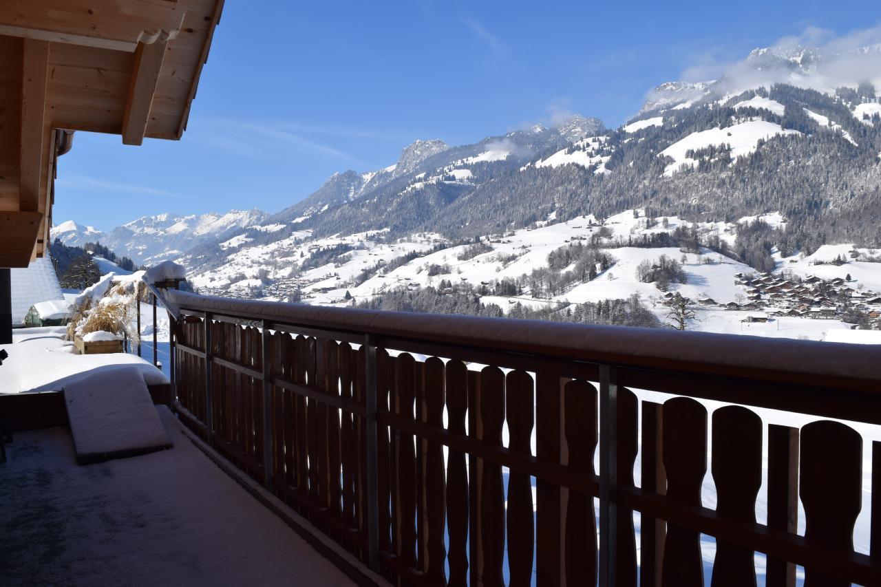 Appartement de vacances 2 Zimmer-Ferienwohnung im Altholz-Stil (2470618), Oey, Diemtigtal, Oberland bernois, Suisse, image 29