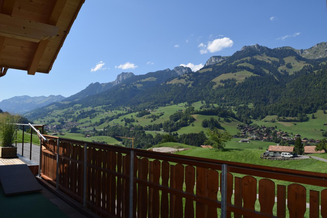 Appartement de vacances 2 Zimmer-Ferienwohnung im Altholz-Stil (2470618), Oey, Diemtigtal, Oberland bernois, Suisse, image 19