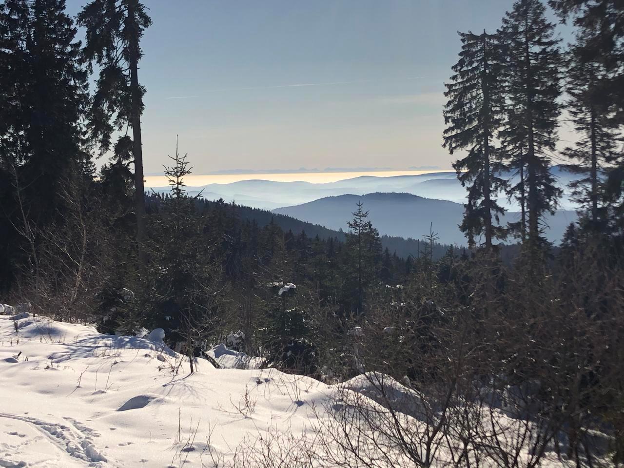Ferienwohnung bis 6 Pers. (251245), Zandt, Bayerischer Wald, Bayern, Deutschland, Bild 26