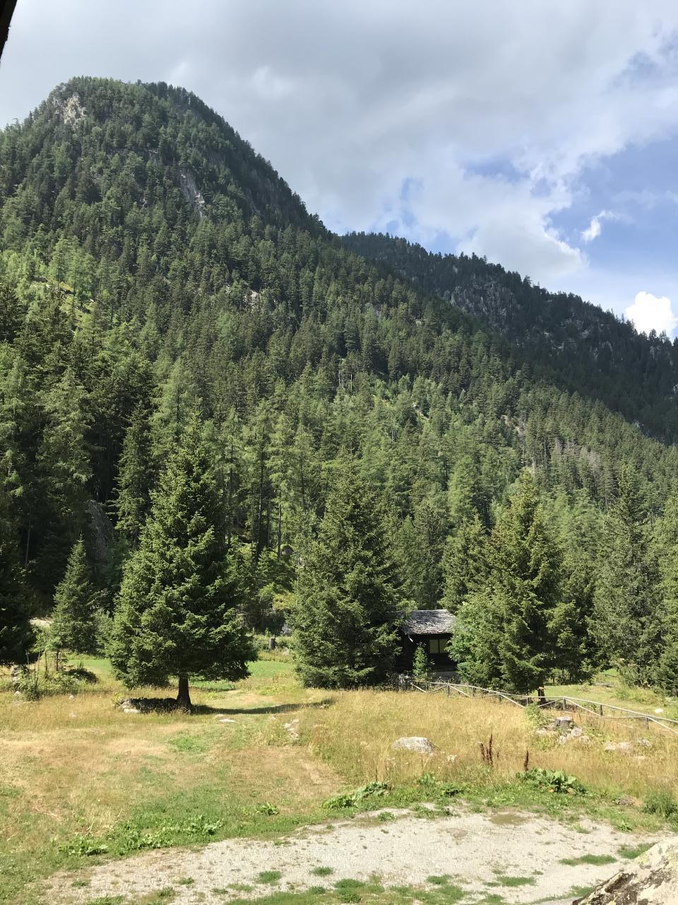 Ferienhaus Chalet Le Grandzon **** (bis 8 Personen) (2513703), Champex-Lac, Val d'Entremont, Wallis, Schweiz, Bild 14