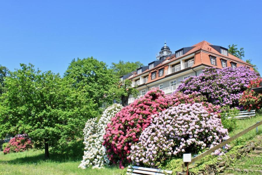 Ferienwohnung Natur und Kunst  Ferienwohnung in Sachsen