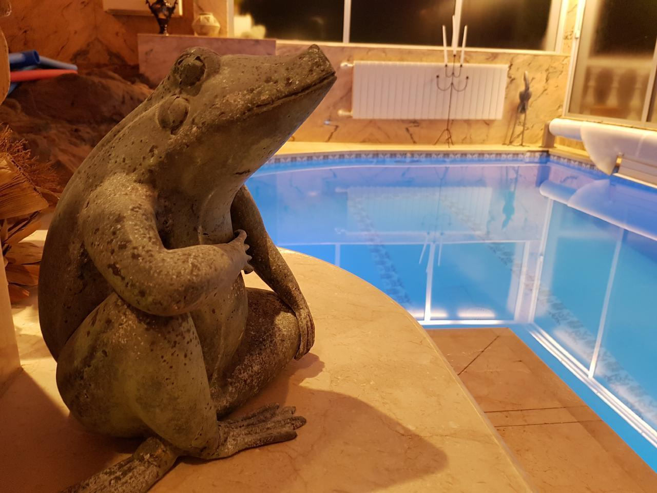 Appartement de vacances Villa Larnia Familien Apartment   * Urlaub für Körper, Geist und Seele * (2529406), El Sauzal, Ténérife, Iles Canaries, Espagne, image 8