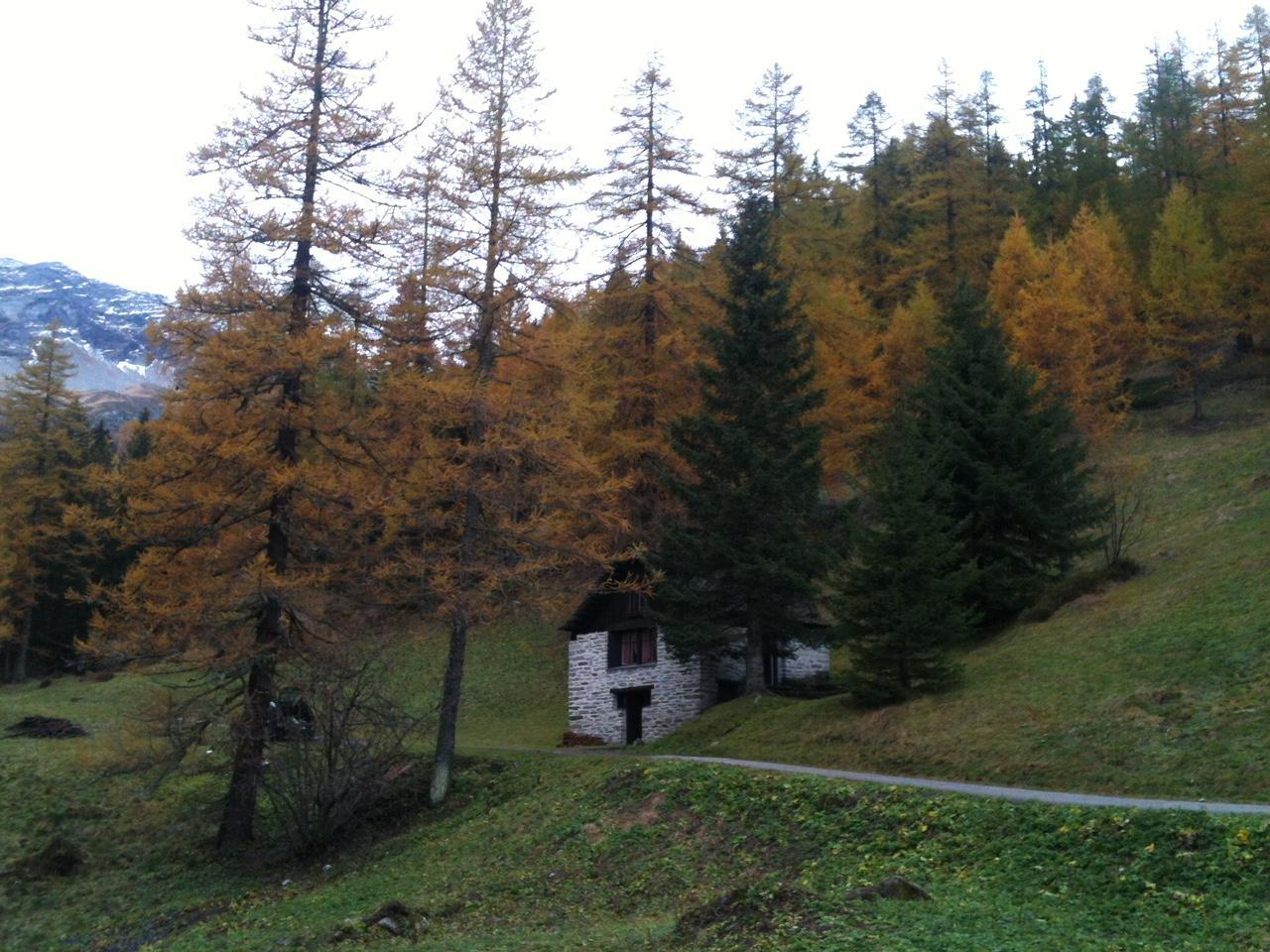Ferienhaus Rustico Bersacola (2529672), Bosco Gurin, Maggiatal, Tessin, Schweiz, Bild 6