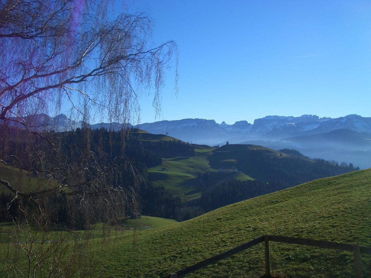 Ferienwohnung Alpsteinblick (2545980), Appenzell, Appenzellerland, Ostschweiz, Schweiz, Bild 2