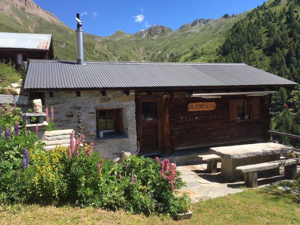 Alphütte Murmolta, auf der Sonnenterrasse im  Hütte