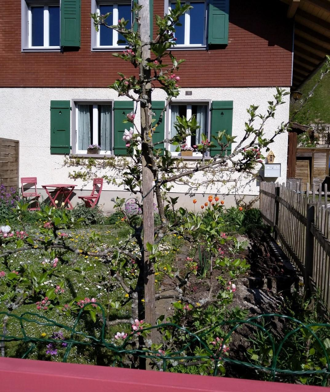 Swiss Valley Apartments: Holiday House Emmental Valley, Holiday Apartment Emmental