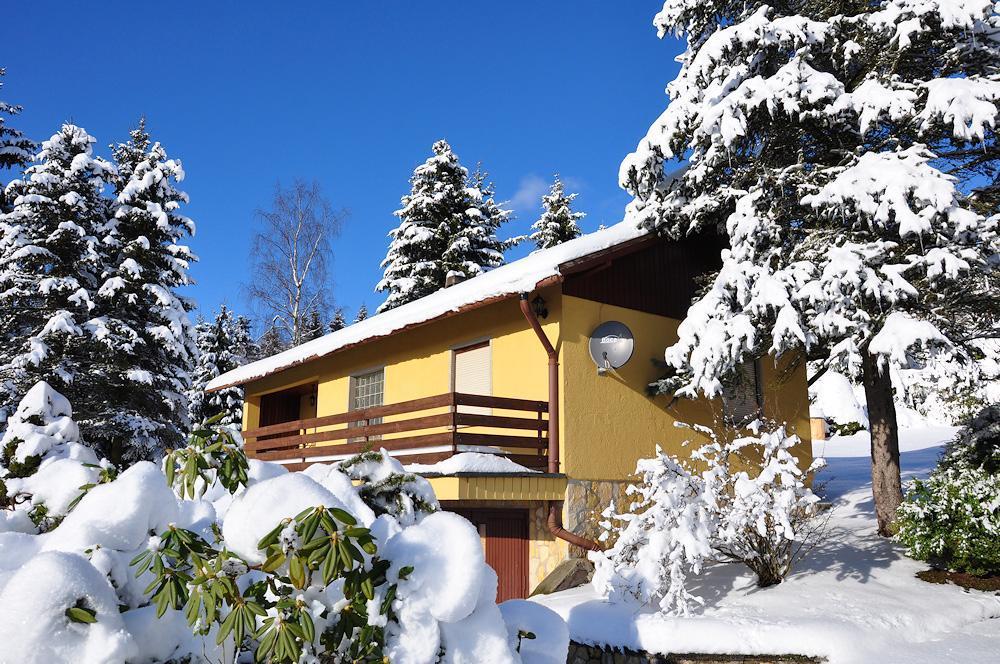 Ferienhaus Bungalow im Thüringer Wald in Suhl-Goldlauter (260041), Suhl, Thüringer Wald, Thüringen, Deutschland, Bild 2