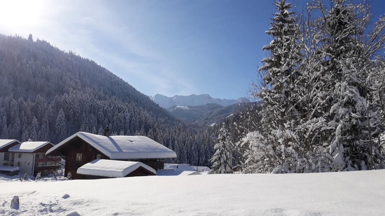 Maison de vacances Chalethälfte Gantrisch Ochsenblick (2626681), Sangernboden, Lac de Thoune - Lac de Brienz, Oberland bernois, Suisse, image 21