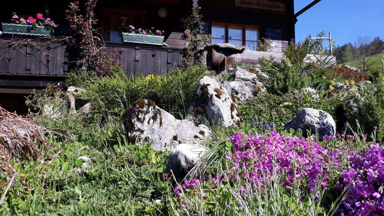 Maison de vacances Chalethälfte Gantrisch Ochsenblick (2626681), Sangernboden, Lac de Thoune - Lac de Brienz, Oberland bernois, Suisse, image 3