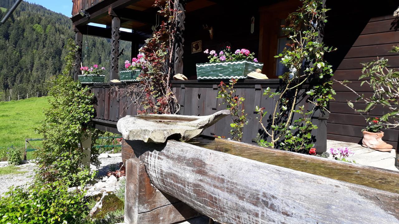 Maison de vacances Chalethälfte Gantrisch Ochsenblick (2626681), Sangernboden, Lac de Thoune - Lac de Brienz, Oberland bernois, Suisse, image 23