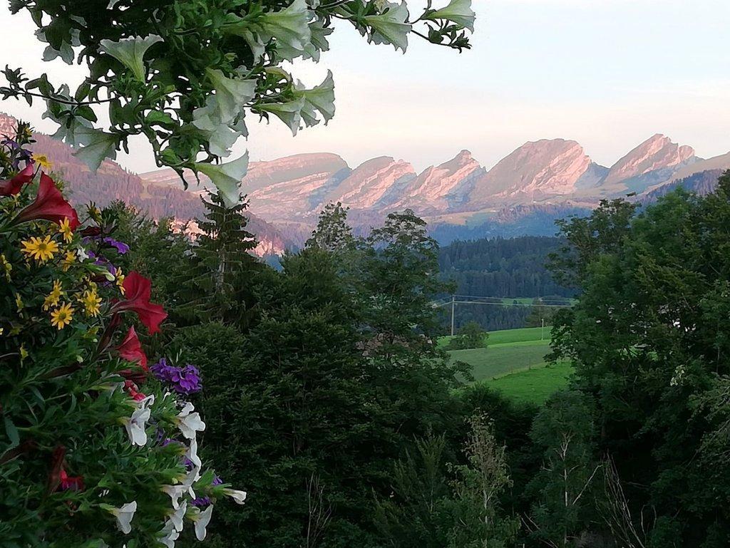Appartement de vacances gemütliche und geräumige Ferienwohnung (2670502), Nesslau, Toggenbourg, Suisse Orientale, Suisse, image 9