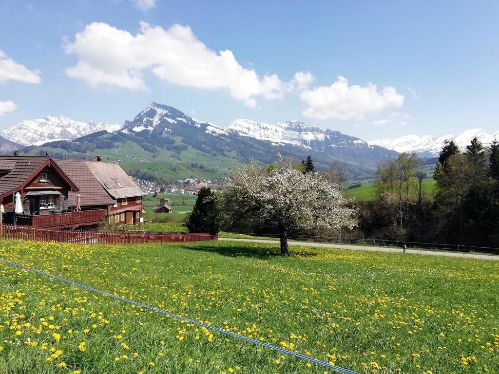 Appartement de vacances gemütliche und geräumige Ferienwohnung (2670502), Nesslau, Toggenbourg, Suisse Orientale, Suisse, image 10