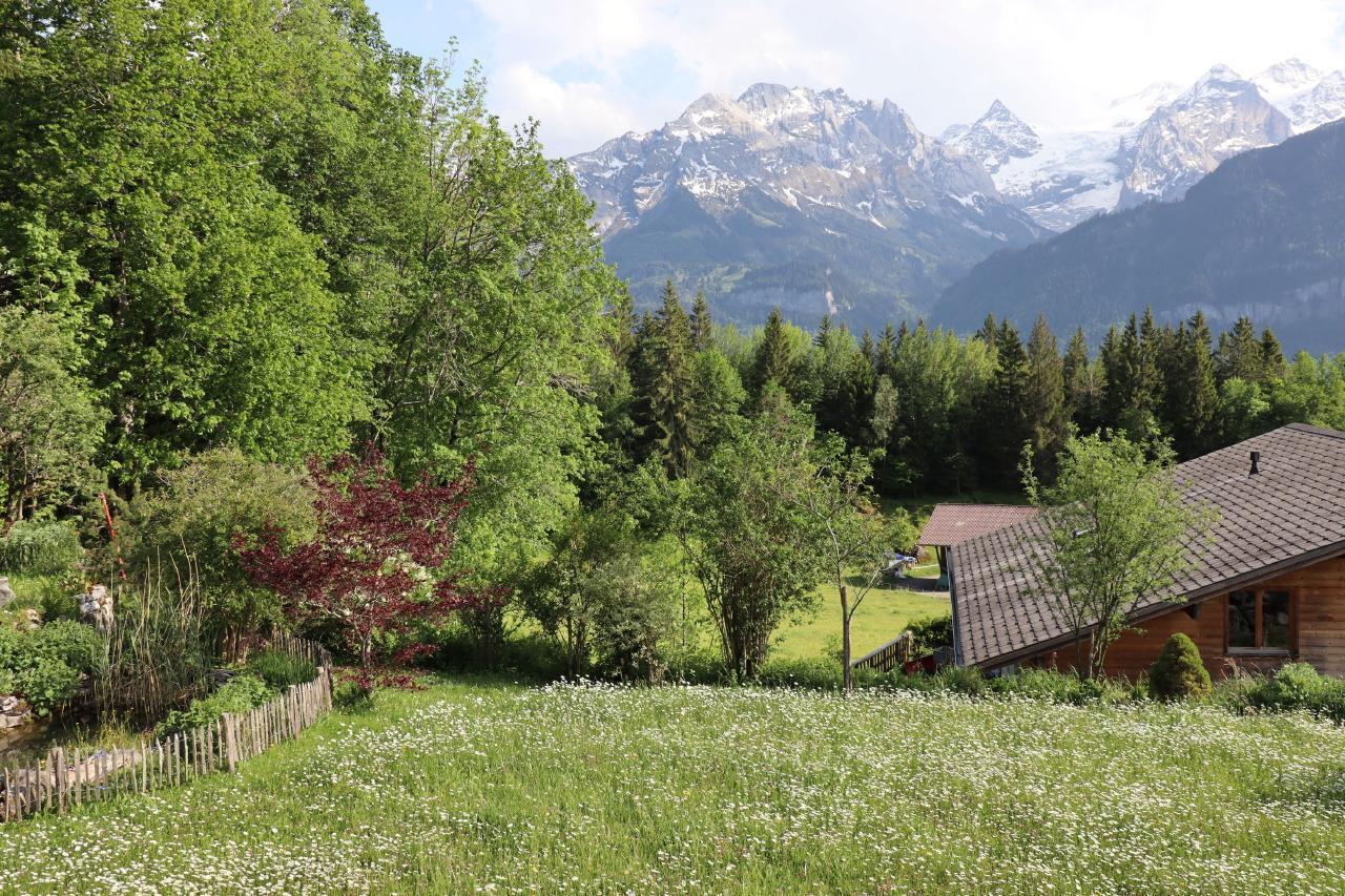Ferienwohnung Leuweli (2691569), Hasliberg Hohfluh, Meiringen - Hasliberg, Berner Oberland, Schweiz, Bild 9