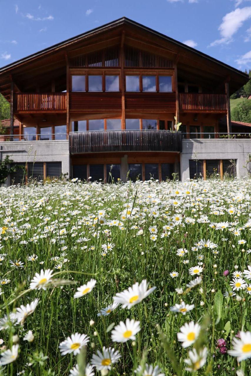 Ferienwohnung Leuweli (2691569), Hasliberg Hohfluh, Meiringen - Hasliberg, Berner Oberland, Schweiz, Bild 4