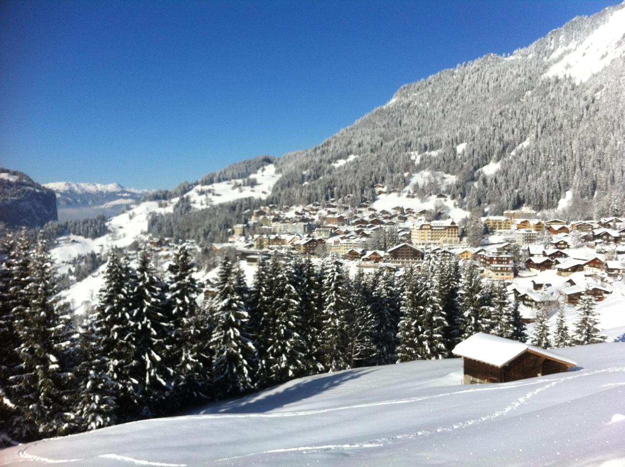 Appartement de vacances Birkli 2, 2 Bett Wohnung (2691724), Wengen, Région de la Jungfrau, Oberland bernois, Suisse, image 17