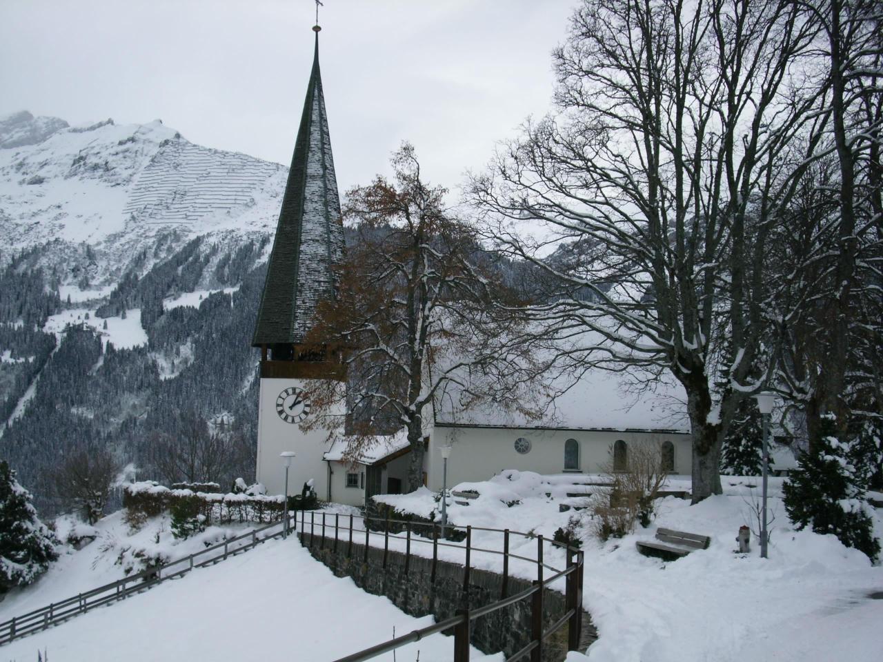 Appartement de vacances Birkli 2, 2 Bett Wohnung (2691724), Wengen, Région de la Jungfrau, Oberland bernois, Suisse, image 23