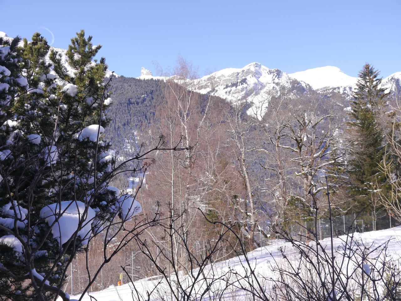 Appartement de vacances Birkli 2, 2 Bett Wohnung (2691724), Wengen, Région de la Jungfrau, Oberland bernois, Suisse, image 20