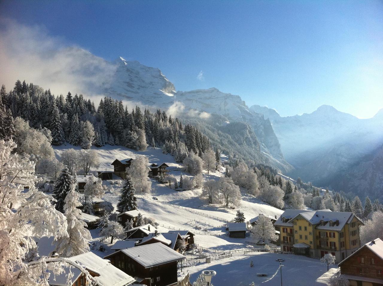 Appartement de vacances Birkli 2, 2 Bett Wohnung (2691724), Wengen, Région de la Jungfrau, Oberland bernois, Suisse, image 14