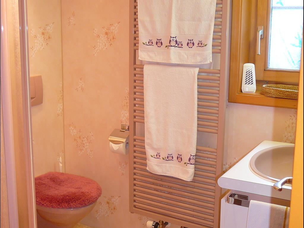 Appartement de vacances Birkli 2, 2 Bett Wohnung (2691724), Wengen, Région de la Jungfrau, Oberland bernois, Suisse, image 5