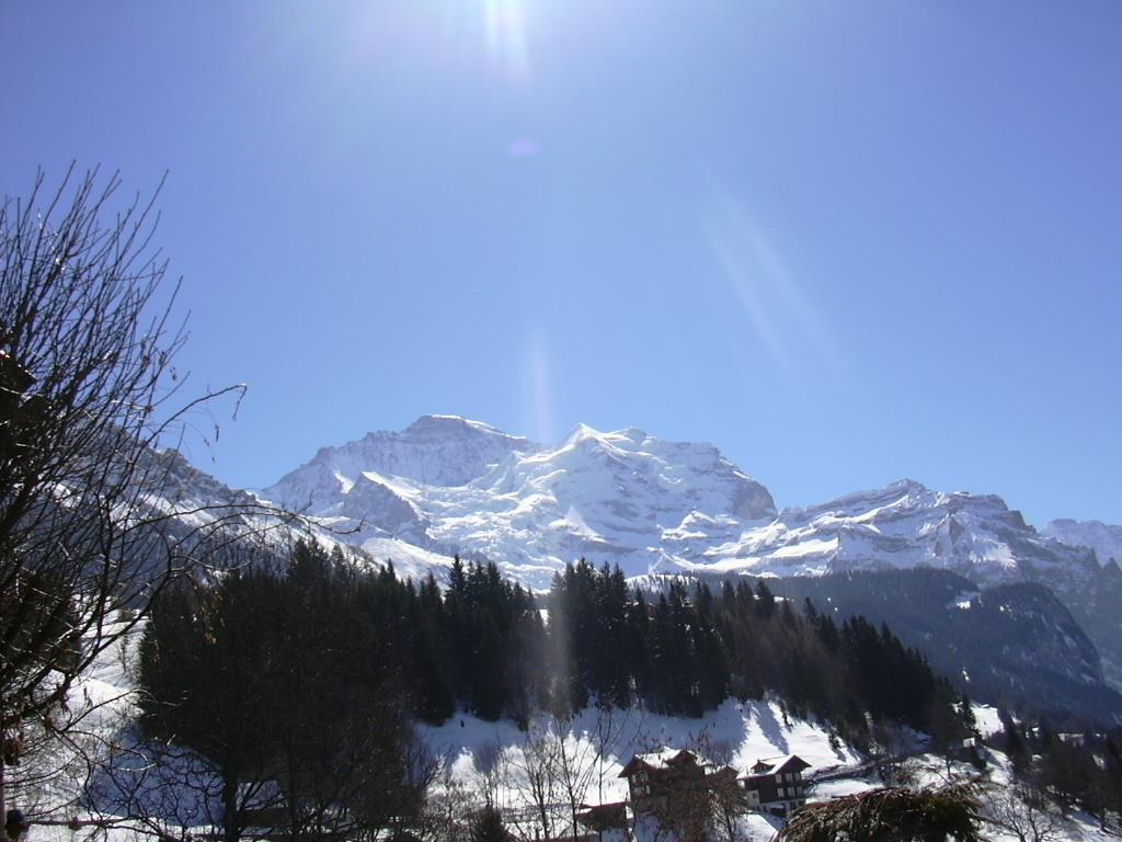 Appartement de vacances Birkli 2, 2 Bett Wohnung (2691724), Wengen, Région de la Jungfrau, Oberland bernois, Suisse, image 13