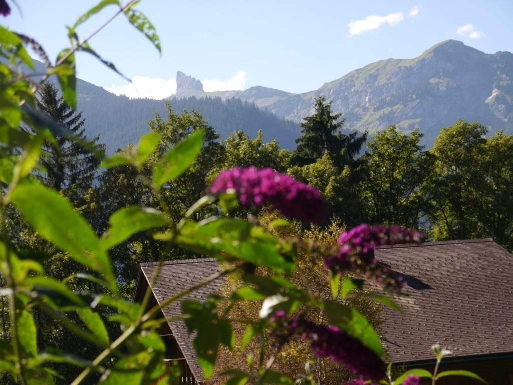 Appartement de vacances Birkli 2, 2 Bett Wohnung (2691724), Wengen, Région de la Jungfrau, Oberland bernois, Suisse, image 22