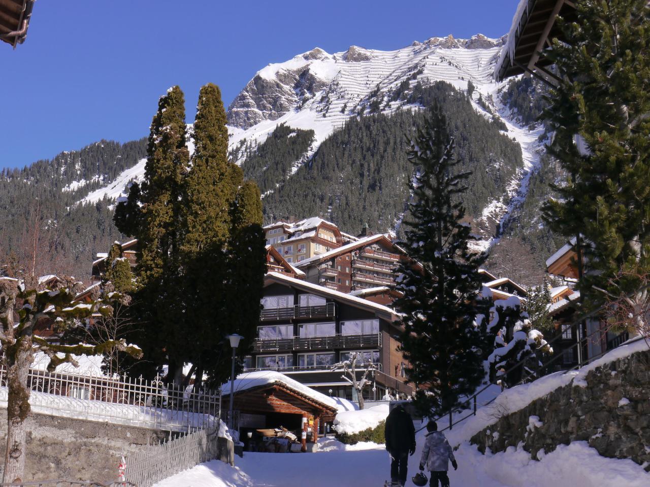 Appartement de vacances Birkli 2, 2 Bett Wohnung (2691724), Wengen, Région de la Jungfrau, Oberland bernois, Suisse, image 18