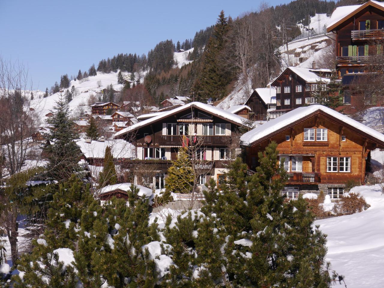 Appartement de vacances Birkli 2, 2 Bett Wohnung (2691724), Wengen, Région de la Jungfrau, Oberland bernois, Suisse, image 19