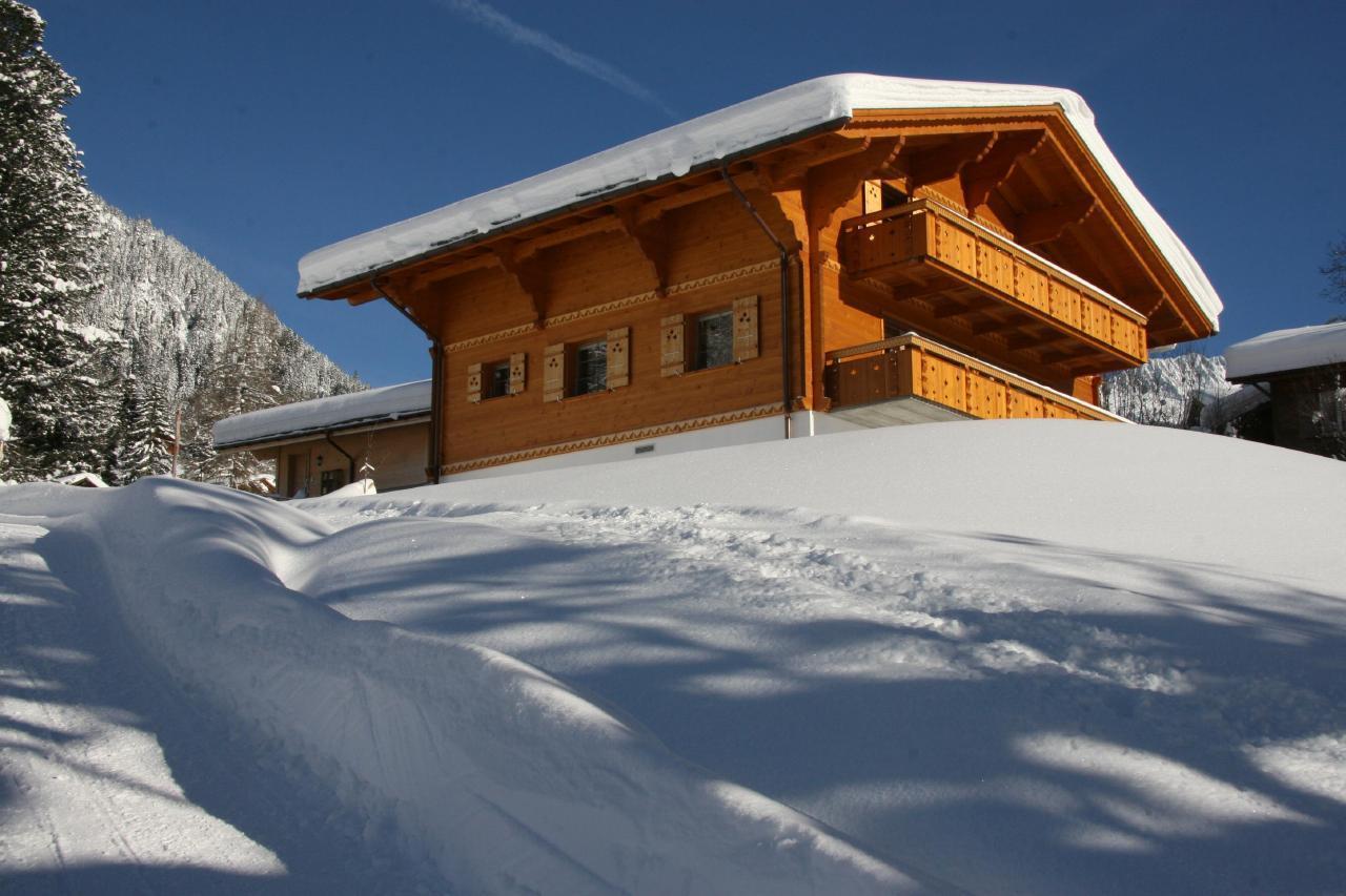 Appartement de vacances Bärgbächli 2 Bett Wohnung (2691725), Grindelwald, Région de la Jungfrau, Oberland bernois, Suisse, image 2