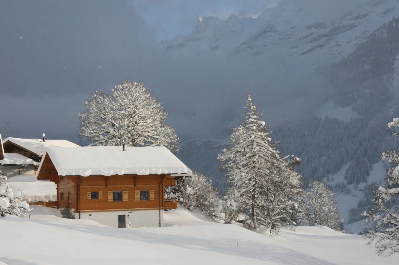 Appartement de vacances Bärgbächli 2 Bett Wohnung (2691725), Grindelwald, Région de la Jungfrau, Oberland bernois, Suisse, image 20