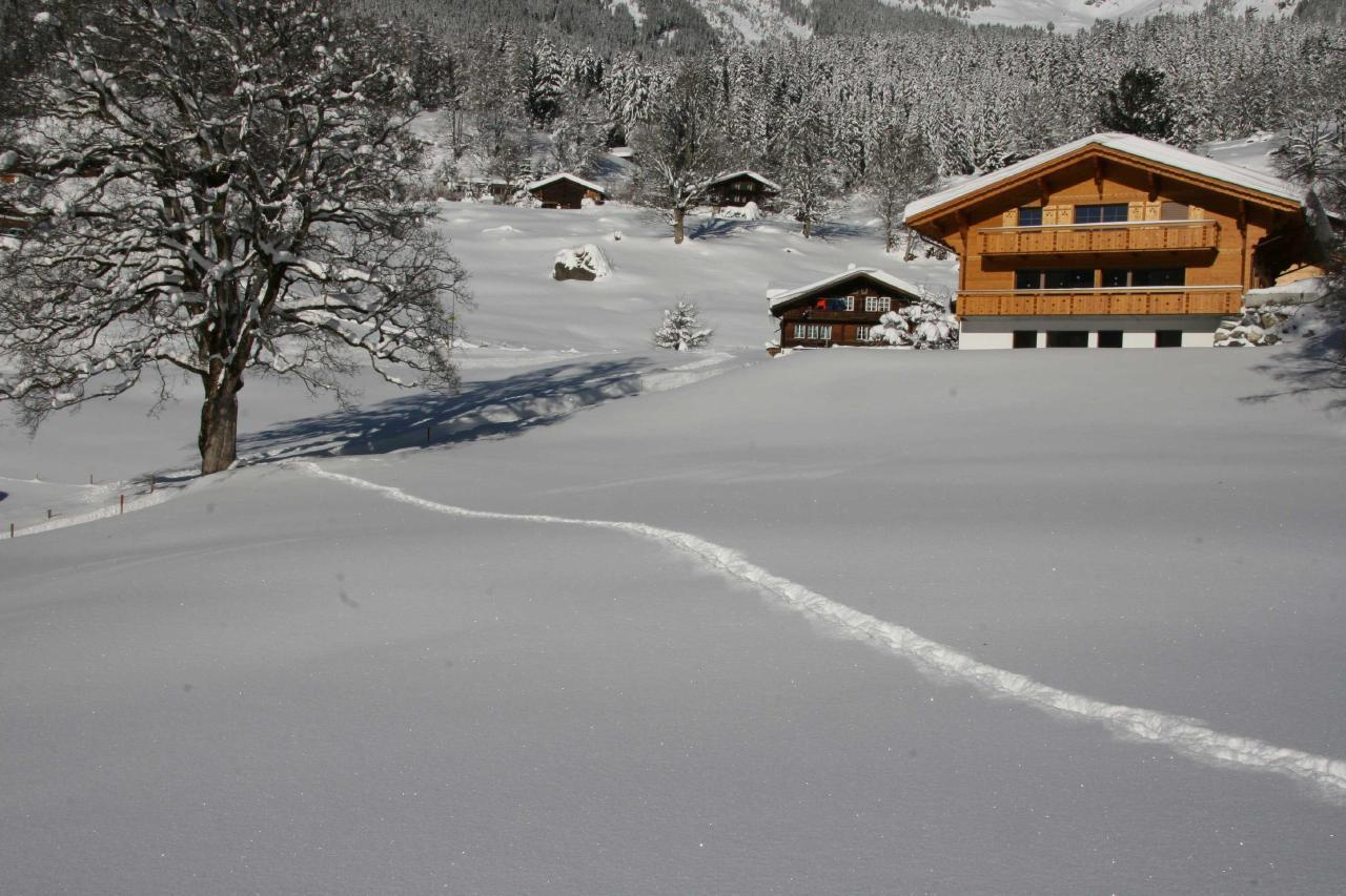 Appartement de vacances Bärgbächli 2 Bett Wohnung (2691725), Grindelwald, Région de la Jungfrau, Oberland bernois, Suisse, image 21
