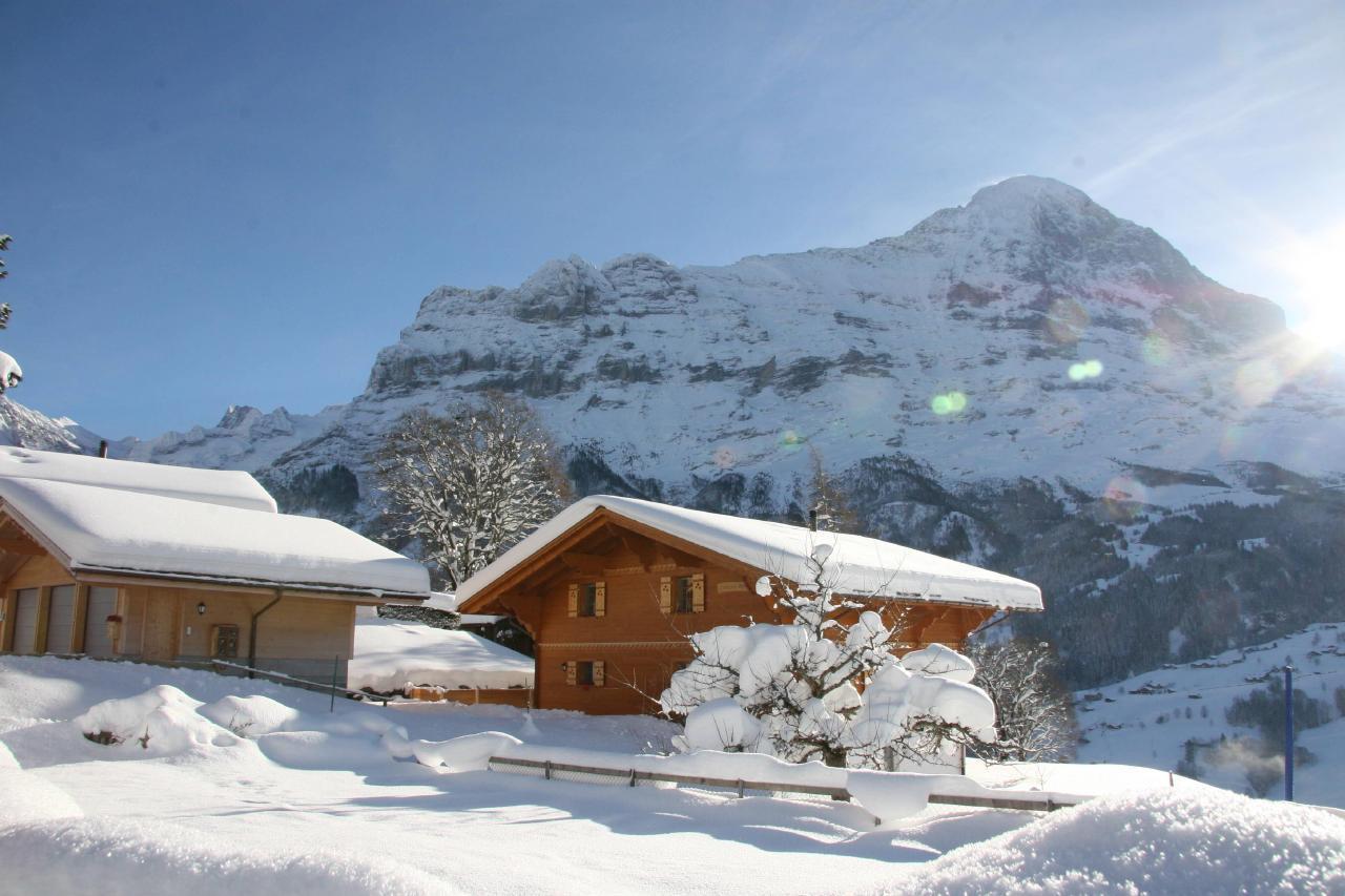 Appartement de vacances Bärgbächli 2 Bett Wohnung (2691725), Grindelwald, Région de la Jungfrau, Oberland bernois, Suisse, image 25