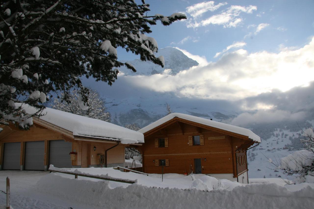 Appartement de vacances Bärgbächli 2 Bett Wohnung (2691725), Grindelwald, Région de la Jungfrau, Oberland bernois, Suisse, image 14