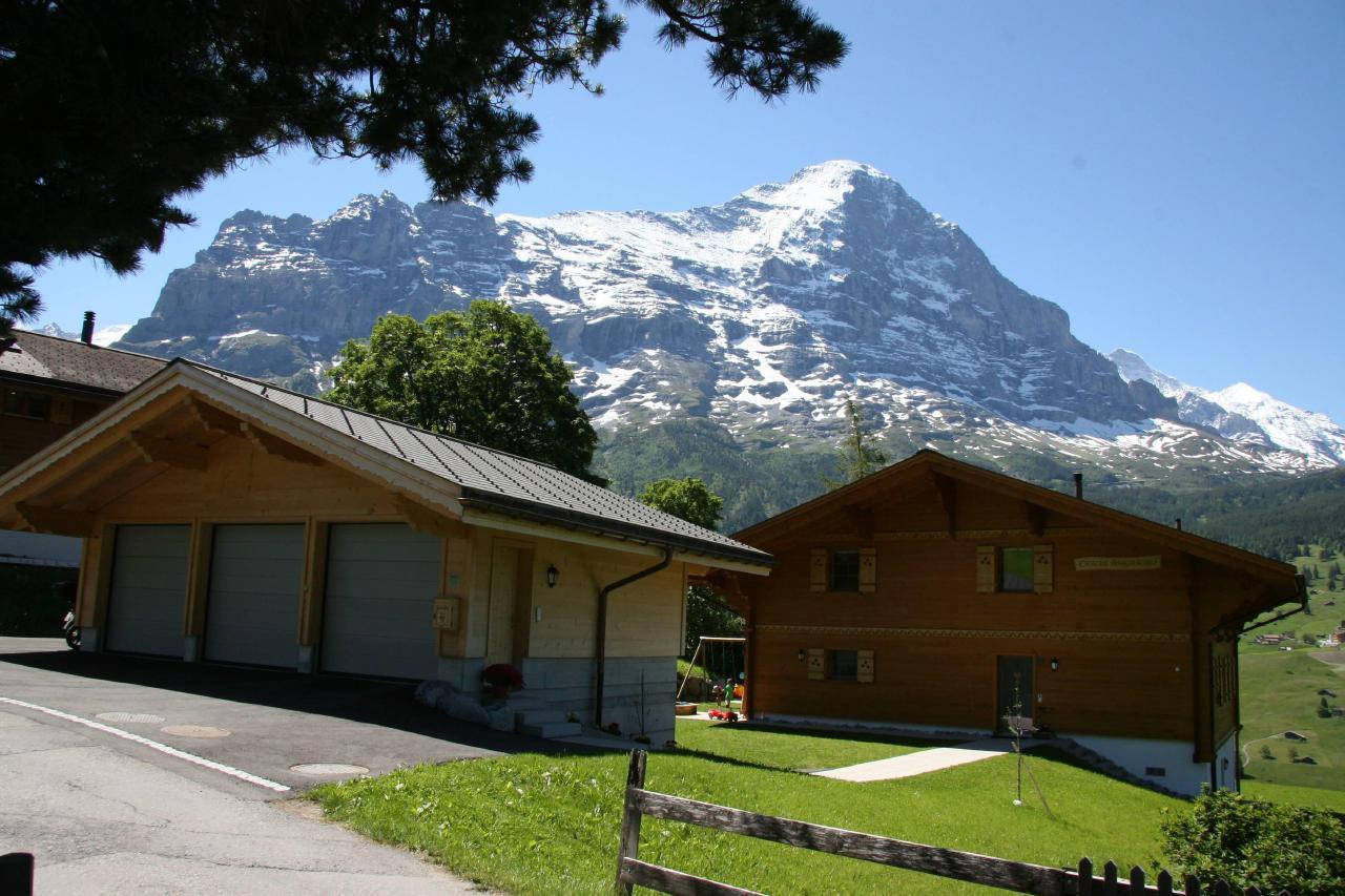 Appartement de vacances Bärgbächli 2 Bett Wohnung (2691725), Grindelwald, Région de la Jungfrau, Oberland bernois, Suisse, image 19