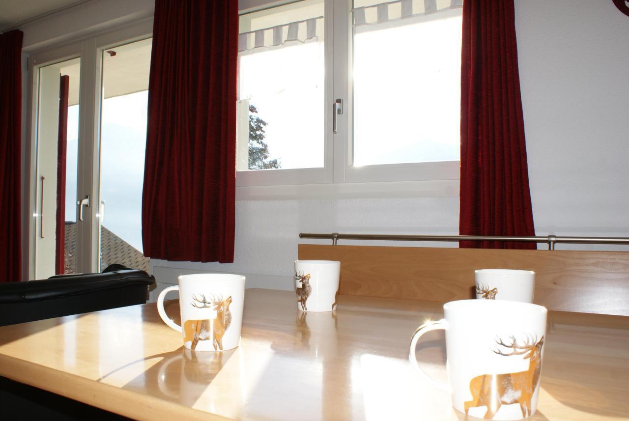 Appartement de vacances Chalet Abigrot 4-Bettwohnung (2691728), Hasliberg Wasserwendi, Meiringen - Hasliberg, Oberland bernois, Suisse, image 15