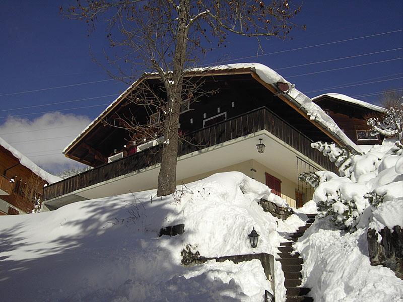 Appartement de vacances Chalet Abigrot 4-Bettwohnung (2691728), Hasliberg Wasserwendi, Meiringen - Hasliberg, Oberland bernois, Suisse, image 1