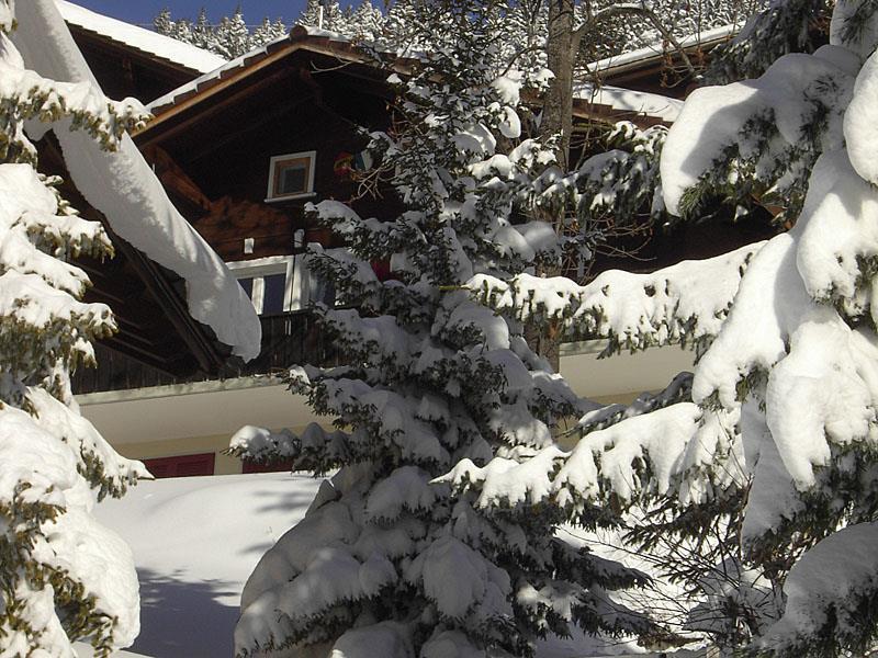 Appartement de vacances Chalet Abigrot 4-Bettwohnung (2691728), Hasliberg Wasserwendi, Meiringen - Hasliberg, Oberland bernois, Suisse, image 2
