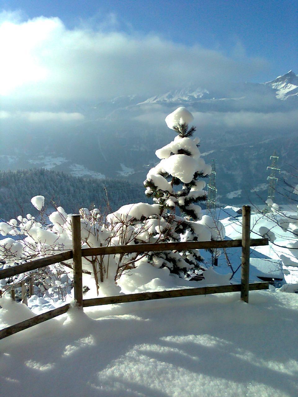 Appartement de vacances Chalet Wieseli 4-Bettwohnung (2692215), Hasliberg Wasserwendi, Meiringen - Hasliberg, Oberland bernois, Suisse, image 12