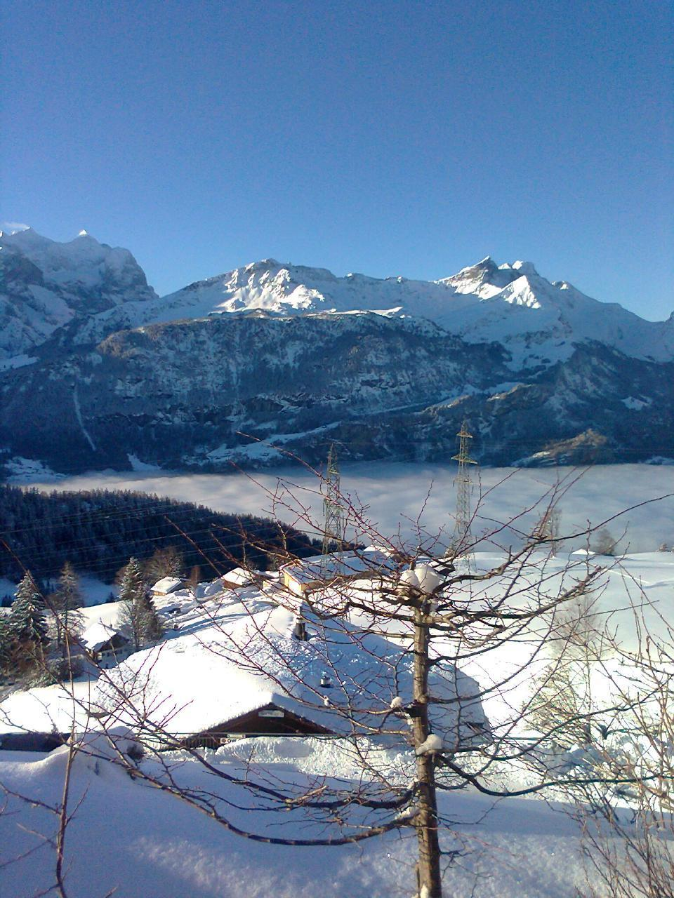 Appartement de vacances Chalet Wieseli 4-Bettwohnung (2692215), Hasliberg Wasserwendi, Meiringen - Hasliberg, Oberland bernois, Suisse, image 10