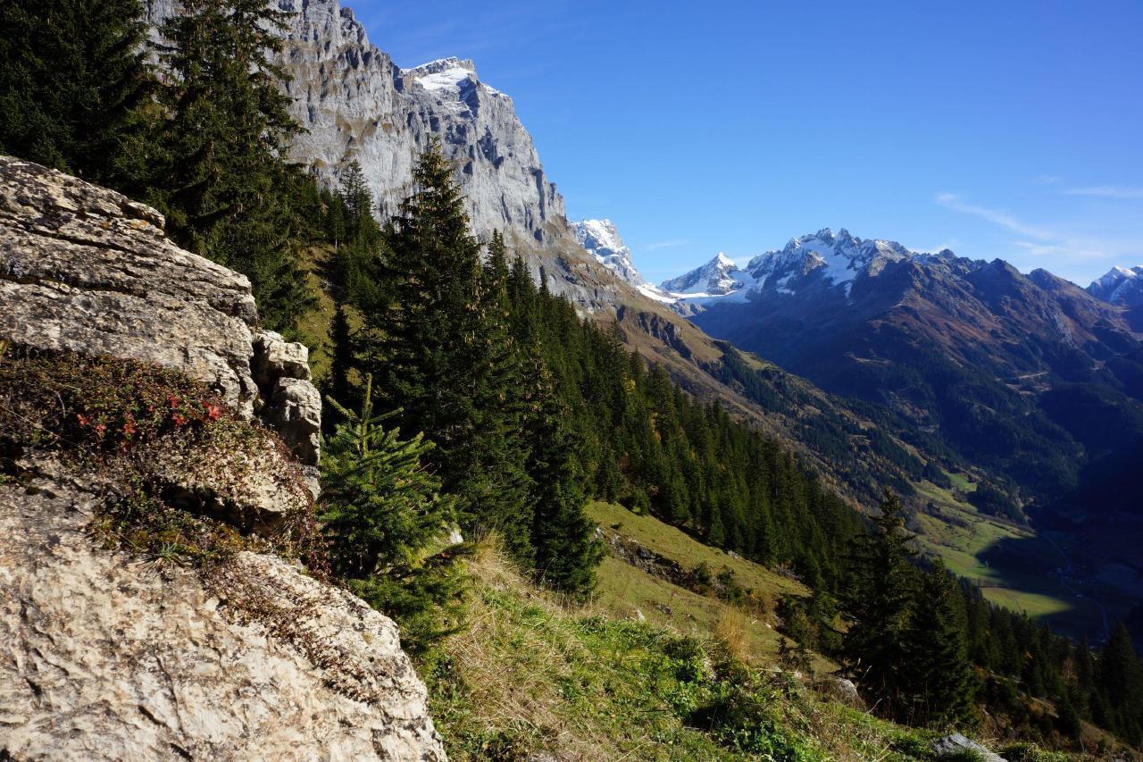 Ferienwohnung Darioli 5-Bettwohnung (2692273), Innertkirchen, Meiringen - Hasliberg, Berner Oberland, Schweiz, Bild 16