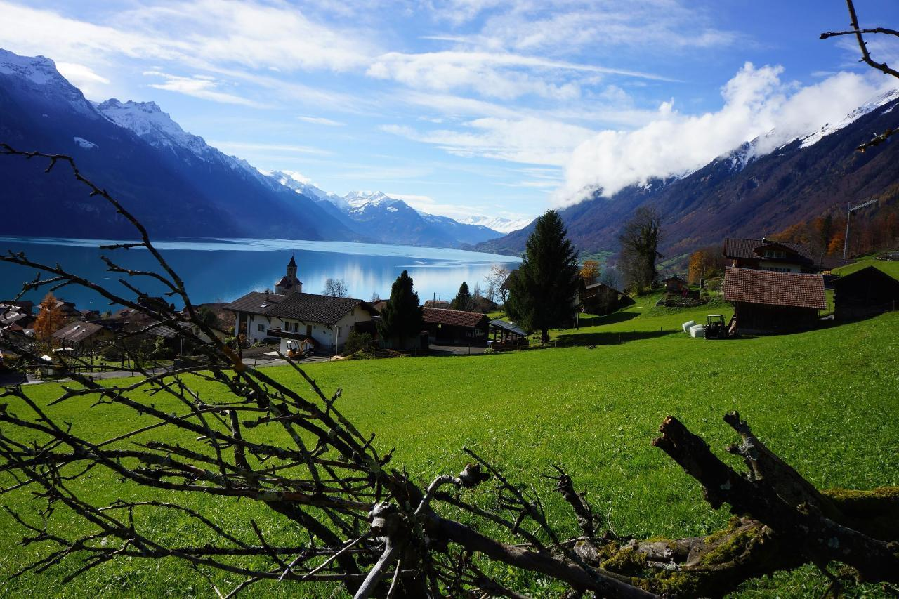 Ferienwohnung Darioli 5-Bettwohnung (2692273), Innertkirchen, Meiringen - Hasliberg, Berner Oberland, Schweiz, Bild 14