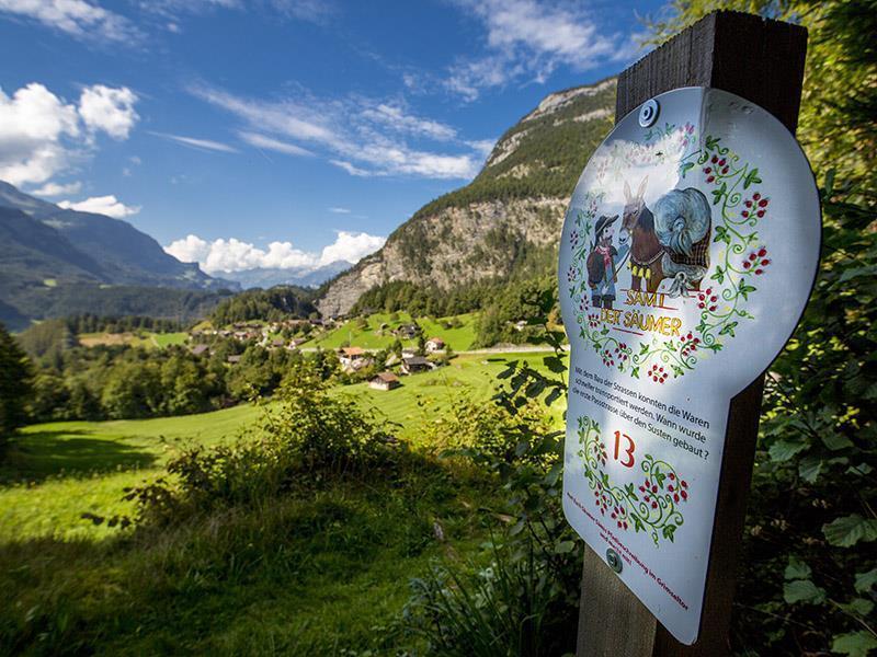 Ferienwohnung Darioli 5-Bettwohnung (2692273), Innertkirchen, Meiringen - Hasliberg, Berner Oberland, Schweiz, Bild 28