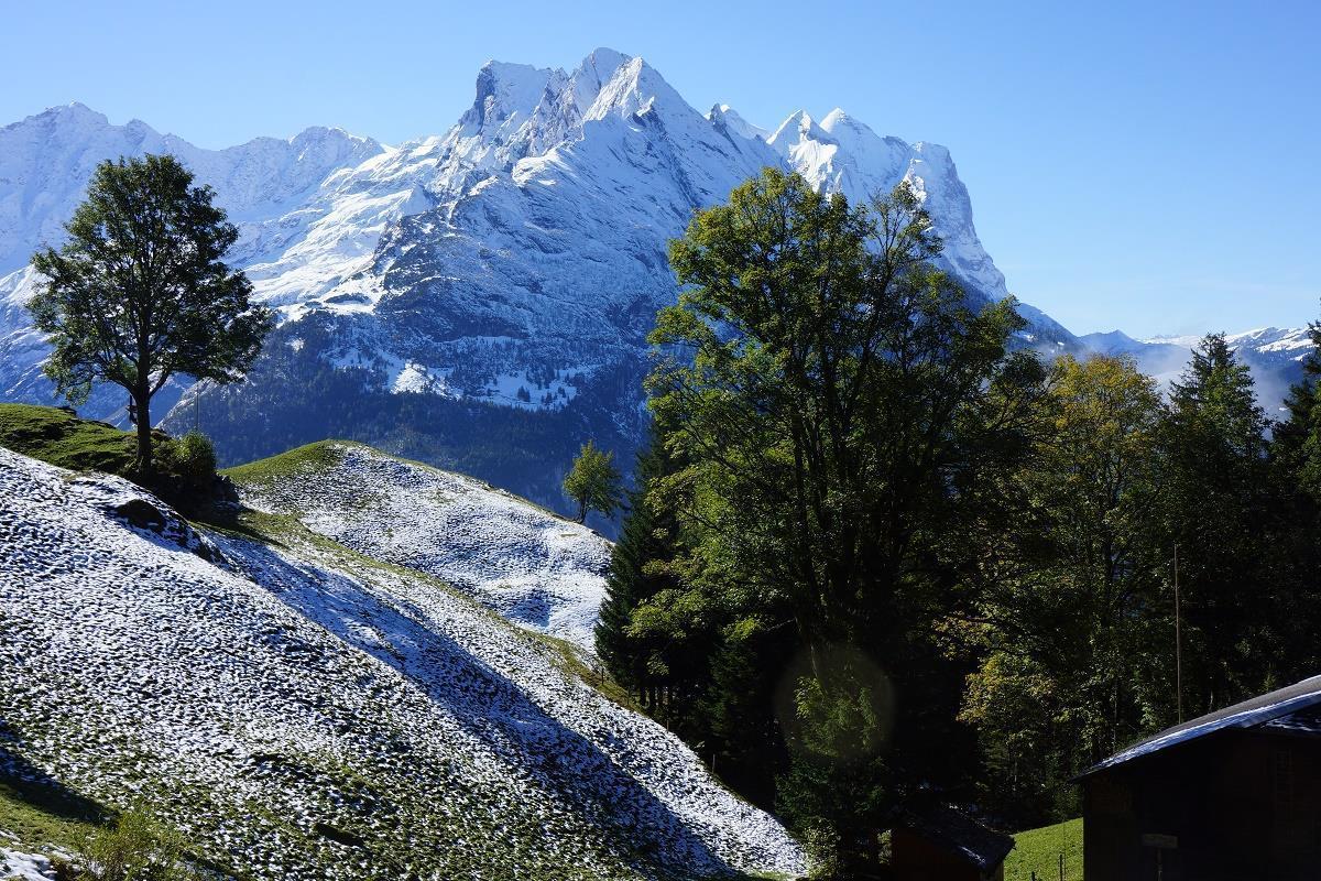 Ferienwohnung Darioli 5-Bettwohnung (2692273), Innertkirchen, Meiringen - Hasliberg, Berner Oberland, Schweiz, Bild 26