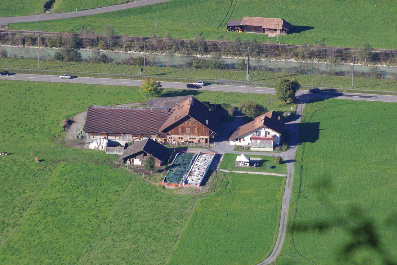 Ferienwohnung Peter Michel 5-Bettwohnung (2692283), Unterbach BE, Meiringen - Hasliberg, Berner Oberland, Schweiz, Bild 16