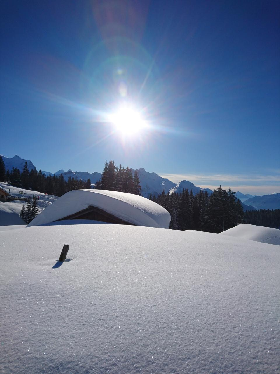Ferienwohnung Obererli 4-Bettwohnung (2692316), Hasliberg Hohfluh, Meiringen - Hasliberg, Berner Oberland, Schweiz, Bild 16