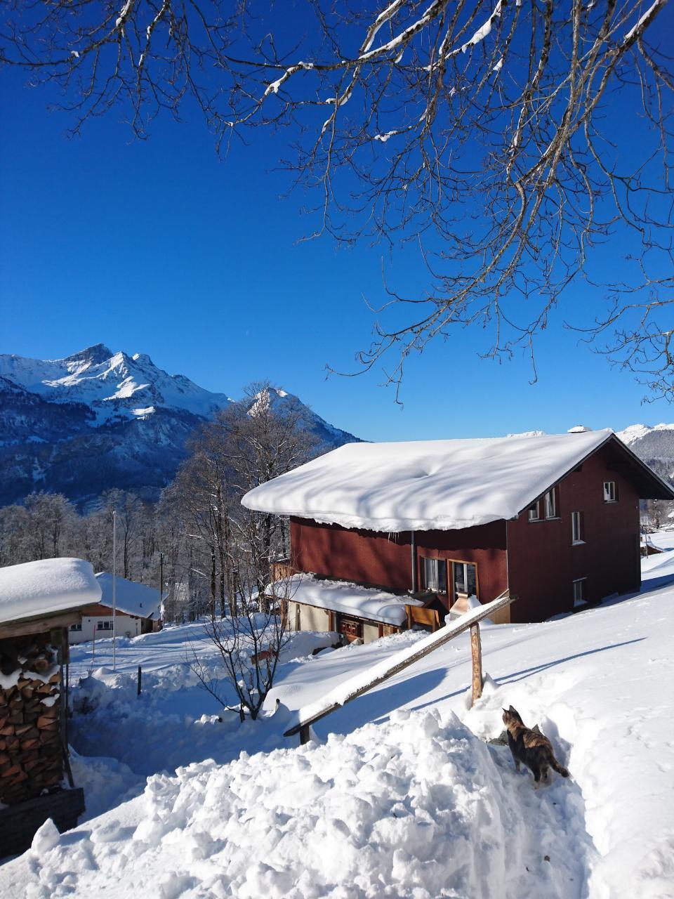 Ferienwohnung Obererli 4-Bettwohnung (2692316), Hasliberg Hohfluh, Meiringen - Hasliberg, Berner Oberland, Schweiz, Bild 20